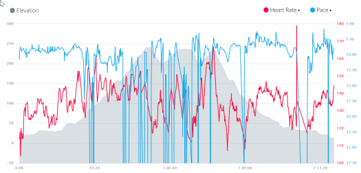 graphs--pace-heart-rate